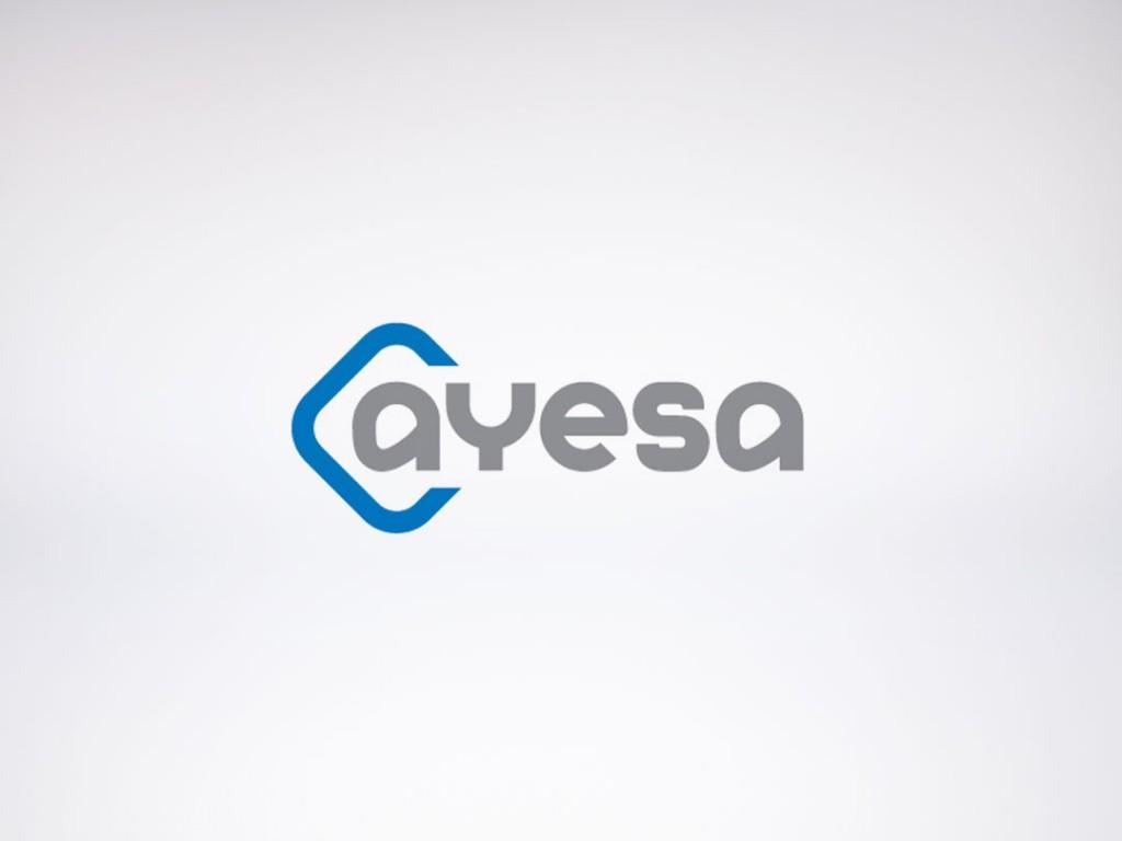 Ayesa – Auditoría Social Media